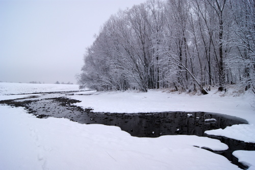 ?�?????� ?????? ?????�?????? (The Bira river covered by snow)